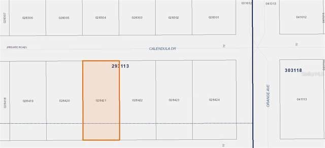 707 Calendula Drive, Indian Lake Estates, FL 33855 (MLS #P4912768) :: Griffin Group