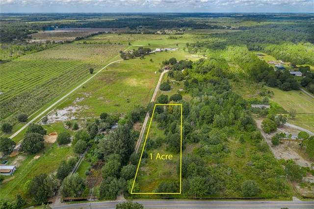 W Frostproof Road Lot 75, Frostproof, FL 33843 (MLS #P4912859) :: EXIT King Realty