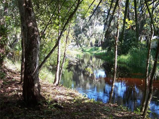 9236 Old Tiger Creek Trail, Lake Wales, FL 33898 (MLS #P4912956) :: Team Buky