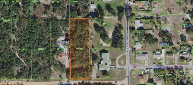 Mccord Road, Lake Wales, FL 33898 (MLS #P4913033) :: The Paxton Group