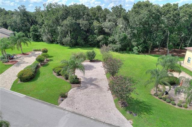 193 Laynewade Road, Polk City, FL 33868 (MLS #P4913134) :: Sarasota Home Specialists