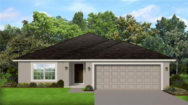 281 Citrus Pointe Drive, Haines City, FL 33844 (MLS #P4913453) :: Team Buky