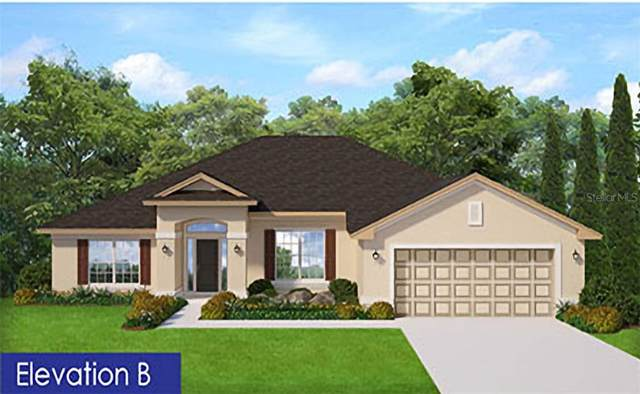 919 Hunters Meadow Lane, Lakeland, FL 33809 (MLS #P4913958) :: The Duncan Duo Team