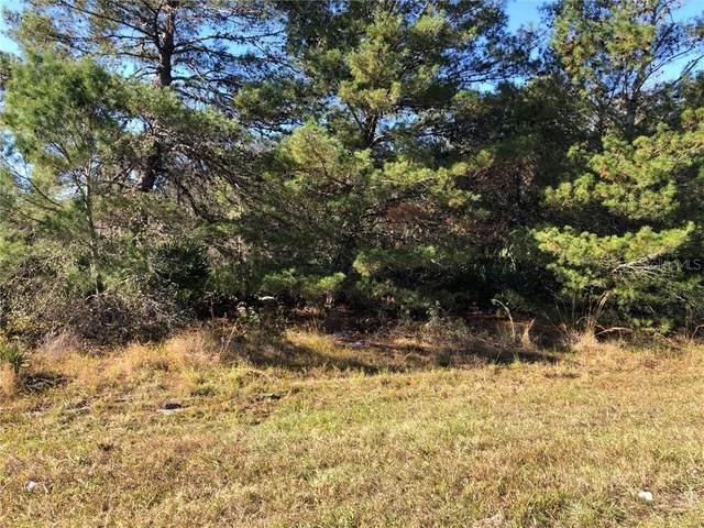 Woodstork Way, Frostproof, FL 33843 (MLS #P4914012) :: Griffin Group
