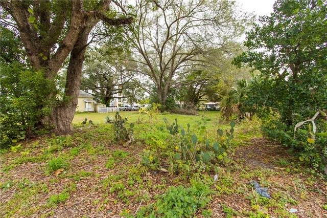 613 N Stella Avenue, Lakeland, FL 33801 (MLS #P4914015) :: Griffin Group
