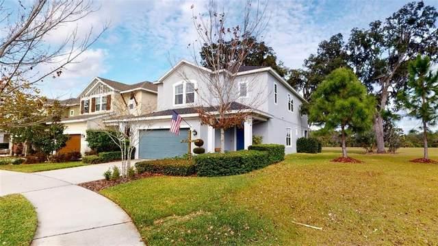 14215 Natures Reserve Drive, Lithia, FL 33547 (MLS #P4914050) :: Dalton Wade Real Estate Group