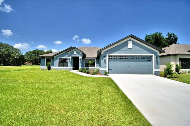 275 Lake Vista Drive, Auburndale, FL 33823 (MLS #P4914126) :: The Heidi Schrock Team