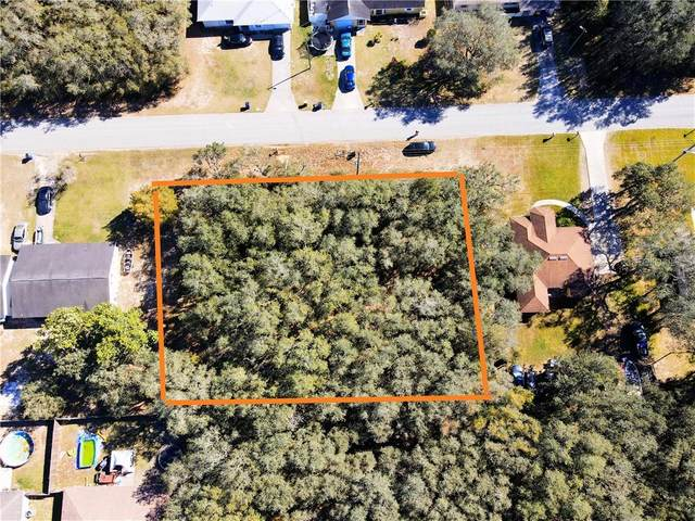 1821 N Highlands Boulevard, Avon Park, FL 33825 (MLS #P4914150) :: Premium Properties Real Estate Services