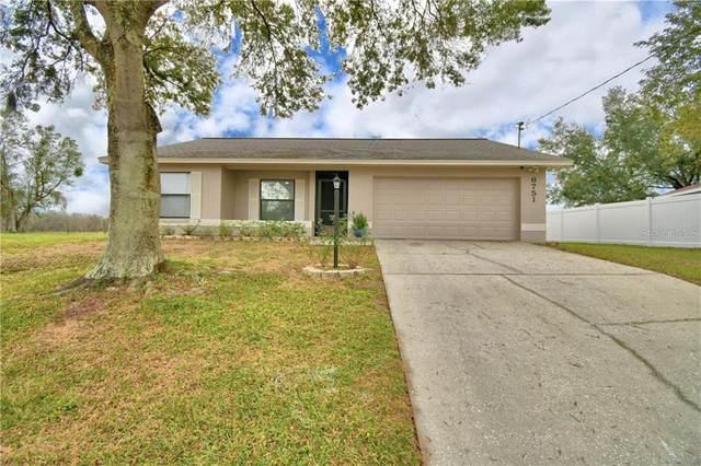 6751 Lemon Tree Drive, Lakeland, FL 33813 (MLS #P4914155) :: Memory Hopkins Real Estate