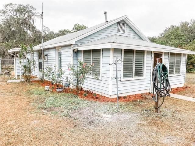 2436 Jungle Street, Lakeland, FL 33801 (MLS #P4914170) :: Sarasota Property Group at NextHome Excellence