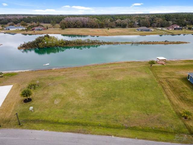 23929 Hideout Trail, Land O Lakes, FL 34639 (MLS #P4914205) :: Delta Realty, Int'l.
