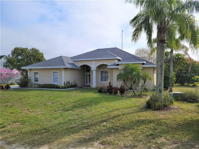 317 Persimmon Drive, Polk City, FL 33868 (MLS #P4914707) :: Tuscawilla Realty, Inc