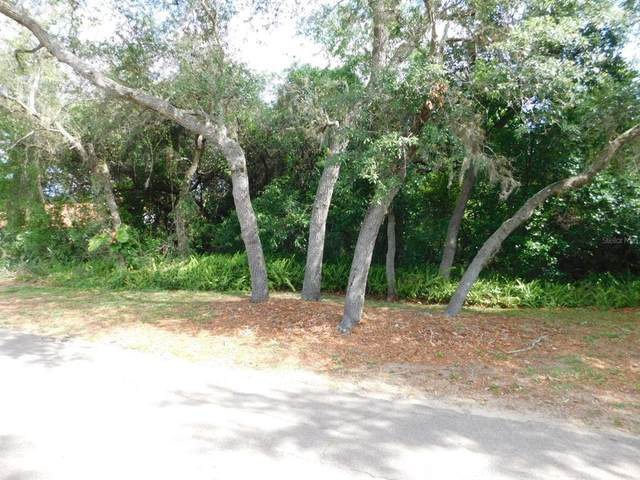 Pine Forest Drive, Haines City, FL 33844 (MLS #P4915388) :: Armel Real Estate