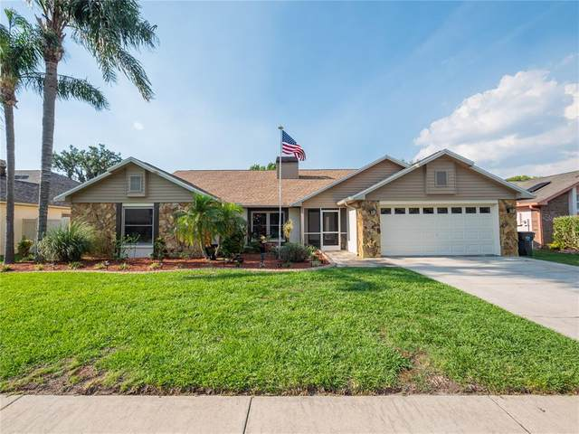 1520 Dumont Drive, Valrico, FL 33596 (MLS #P4915550) :: The Hesse Team