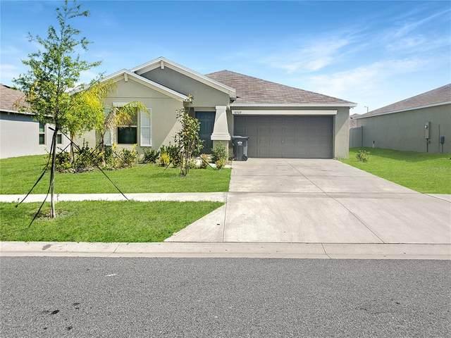 10509 Strawberry Tetra Drive, Riverview, FL 33578 (MLS #P4915601) :: Pepine Realty