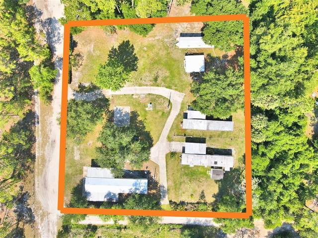 8895 Wild Turkey Trail, Haines City, FL 33844 (MLS #P4915603) :: Premium Properties Real Estate Services