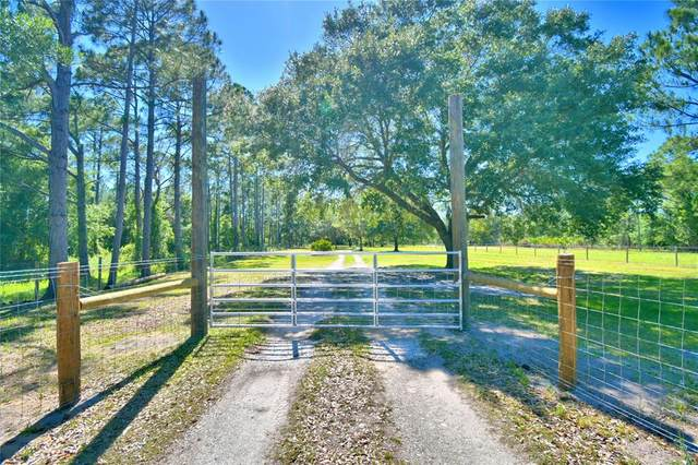 519 Tiger Lake Road, Lake Wales, FL 33898 (MLS #P4915627) :: The Kardosh Team