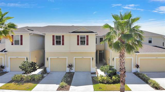 10961 Verawood Drive, Riverview, FL 33579 (MLS #P4915727) :: Armel Real Estate