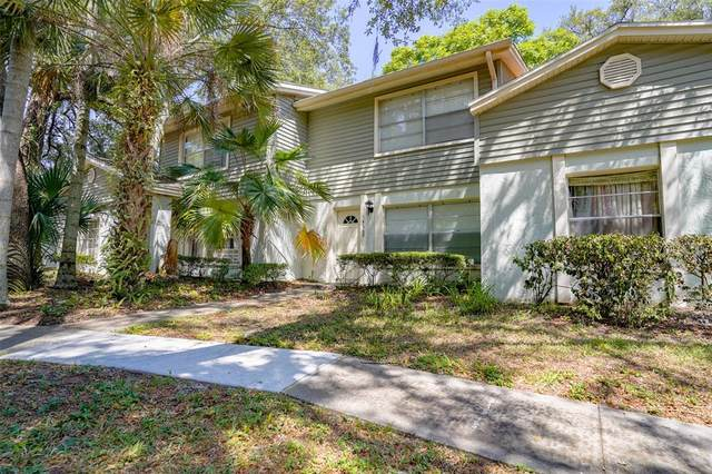 14669 Pine Glen Circle, Lutz, FL 33559 (MLS #P4916001) :: Sarasota Home Specialists