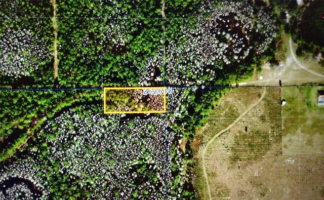 Sweethill Path, Polk City, FL 33868 (MLS #P4916061) :: Globalwide Realty