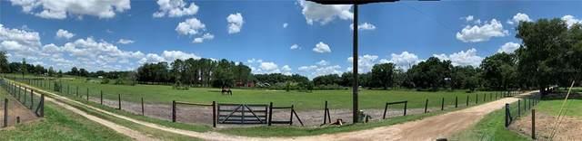 Country Lane, Plant City, FL 33565 (MLS #P4916138) :: Everlane Realty