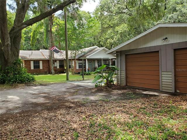917 E Derby Avenue, Auburndale, FL 33823 (MLS #P4916153) :: Zarghami Group