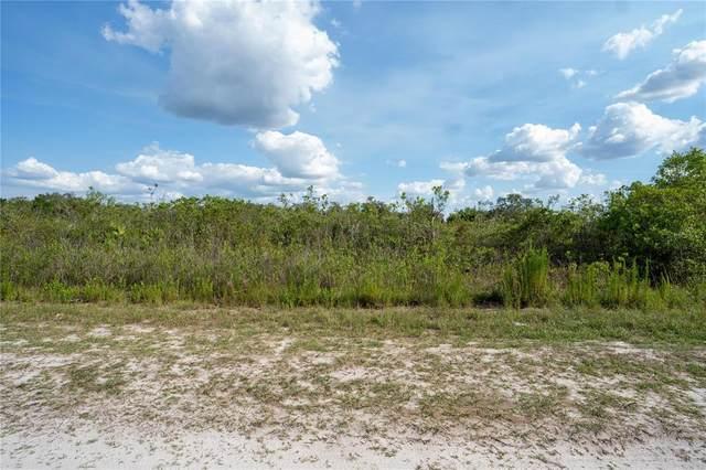 0 Sarver Avenue, Lake Wales, FL 33859 (MLS #P4916173) :: Pristine Properties