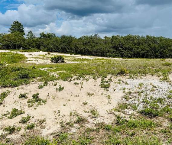 1987 Old Grove Trail, Frostproof, FL 33843 (MLS #P4916178) :: The Light Team