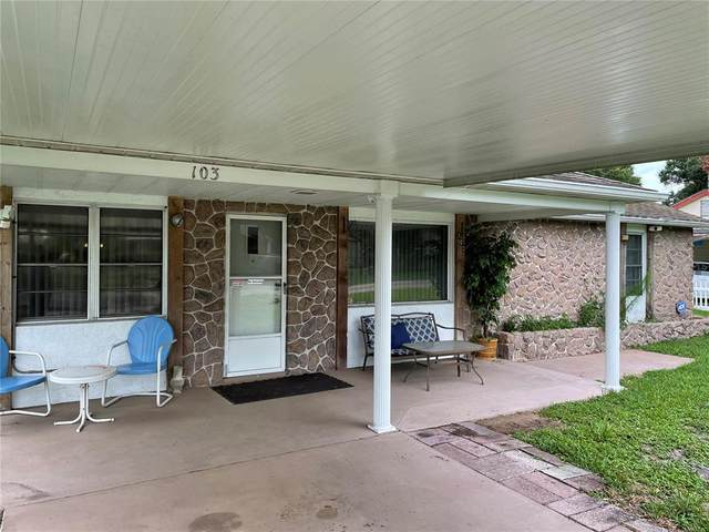 103 Palm Drive, Winter Haven, FL 33880 (MLS #P4916222) :: Gate Arty & the Group - Keller Williams Realty Smart