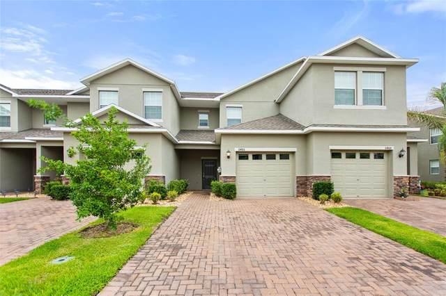 6486 Sedgeford Drive, Lakeland, FL 33811 (MLS #P4916226) :: Griffin Group
