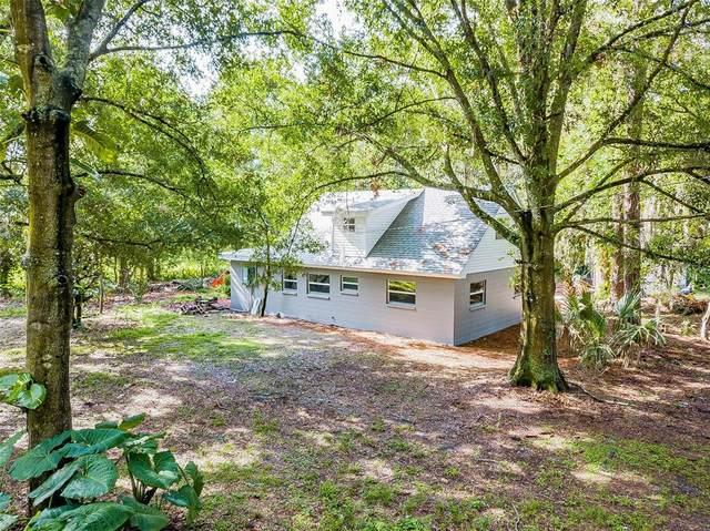 2401 Teri Street, Auburndale, FL 33823 (MLS #P4916301) :: Coldwell Banker Vanguard Realty
