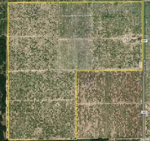 4915 80 FOOT Road, Bartow, FL 33830 (MLS #P4916620) :: Baird Realty Group