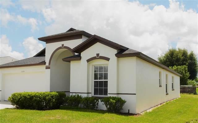 1024 View Pointe Circle, Lake Wales, FL 33853 (MLS #P4916647) :: Zarghami Group