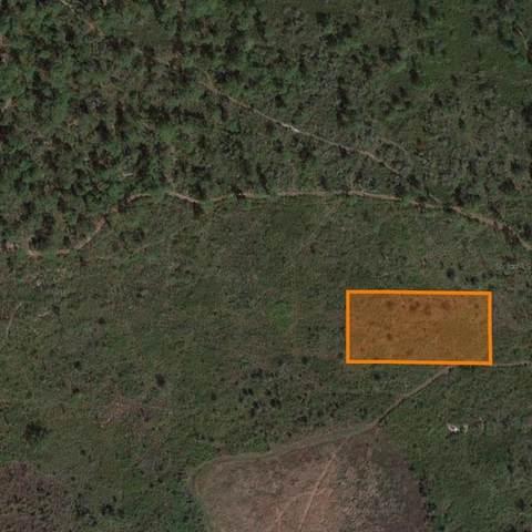 0 Cincinati Landing Road, Lake Wales, FL 33898 (#P4916691) :: Caine Luxury Team