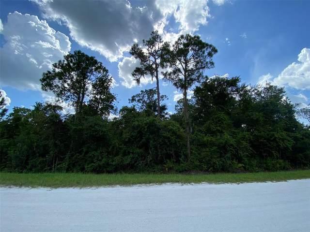 6111 Hazel Road, Sebring, FL 33875 (MLS #P4916760) :: Premium Properties Real Estate Services