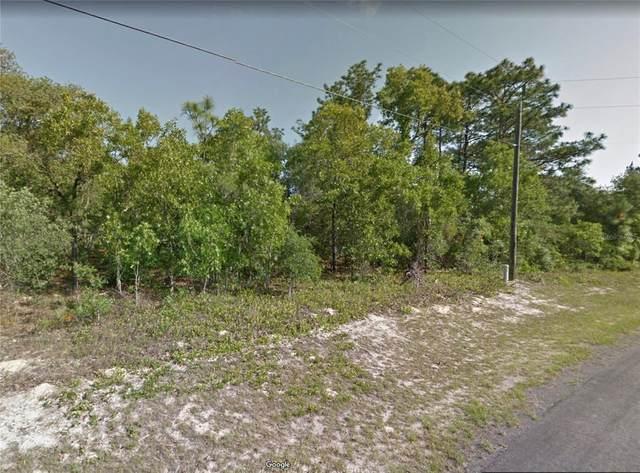 8537 N Linwood Loop, Citrus Springs, FL 34433 (MLS #P4916776) :: Prestige Home Realty