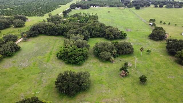 Bassett Road, Lake Wales, FL 33898 (MLS #P4916789) :: Gate Arty & the Group - Keller Williams Realty Smart