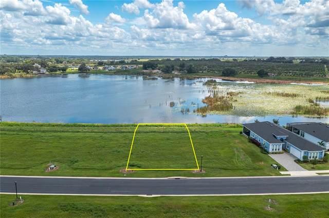 148 Caladium Avenue, Lake Alfred, FL 33850 (MLS #P4917086) :: Vacasa Real Estate