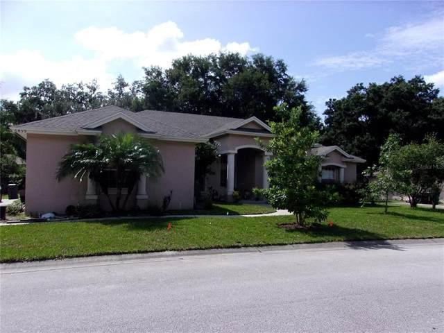 6459 Bristol Oaks Drive, Lakeland, FL 33811 (MLS #P4917222) :: Delgado Home Team at Keller Williams