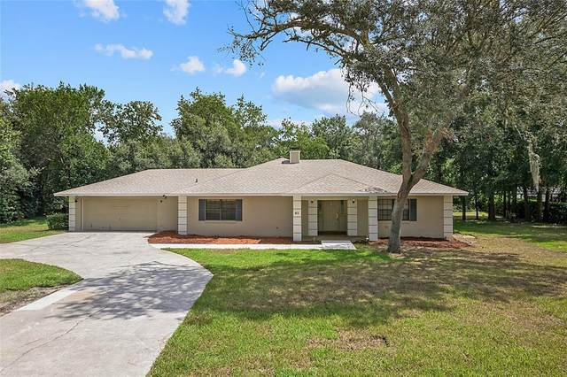 45 Spring Lane, Haines City, FL 33844 (MLS #P4917296) :: The Curlings Group
