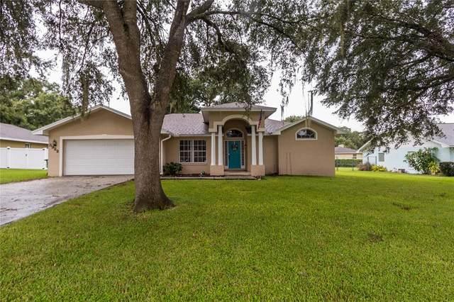3922 Laurel Branch Court, Lakeland, FL 33810 (MLS #P4917406) :: Baird Realty Group