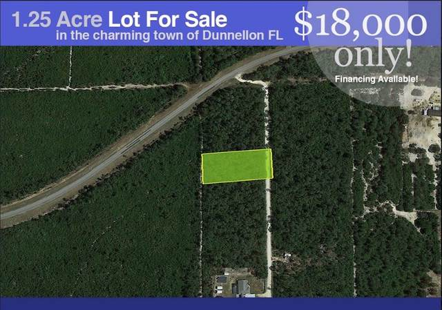 8184 N GABRIEL PT, Dunnellon, FL 34433 (MLS #P4917462) :: American Premier Realty LLC