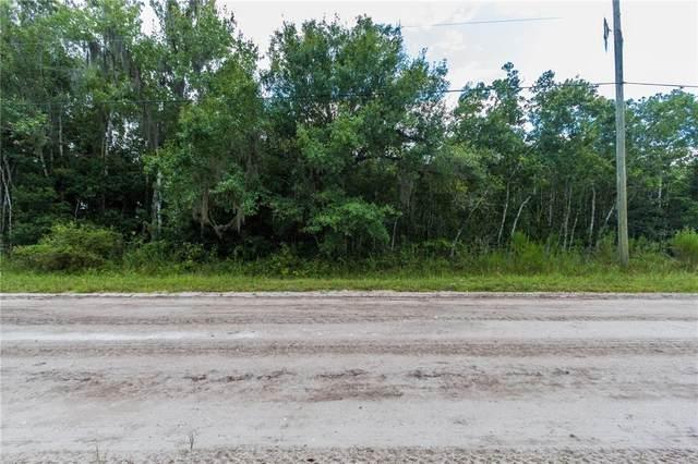 Rawls Road, Lake Wales, FL 33898 (MLS #P4917466) :: Everlane Realty