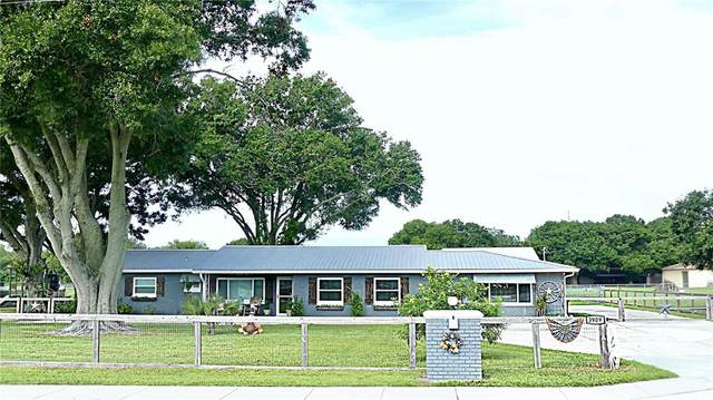 3909 Berkley Road, Auburndale, FL 33823 (MLS #P4917503) :: CENTURY 21 OneBlue