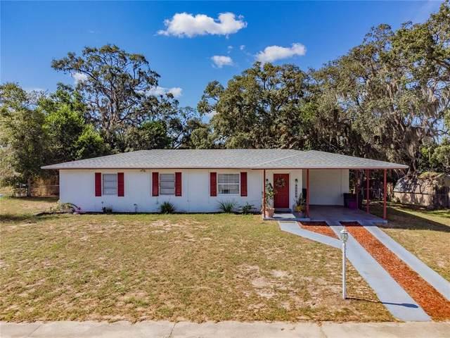 6925 Treehaven Drive, Spring Hill, FL 34606 (MLS #P4917509) :: Expert Advisors Group
