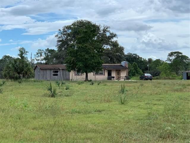 1509 Horse Shoe Creek Road, Davenport, FL 33837 (MLS #P4917579) :: Cartwright Realty