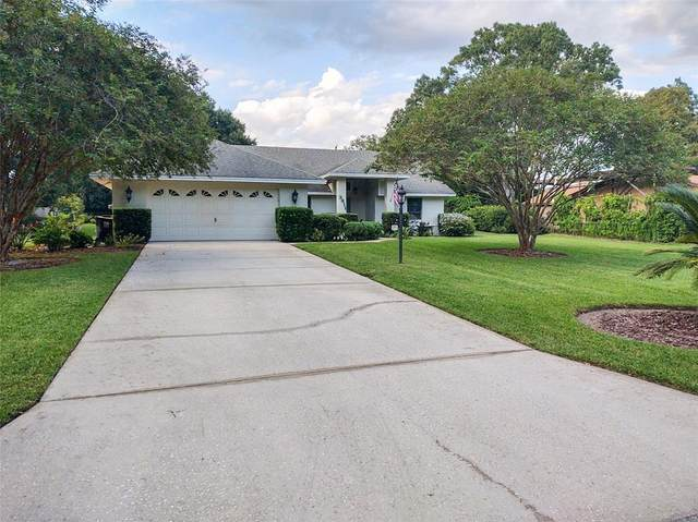 3811 Gaines Drive, Winter Haven, FL 33884 (MLS #P4917601) :: RE/MAX Marketing Specialists