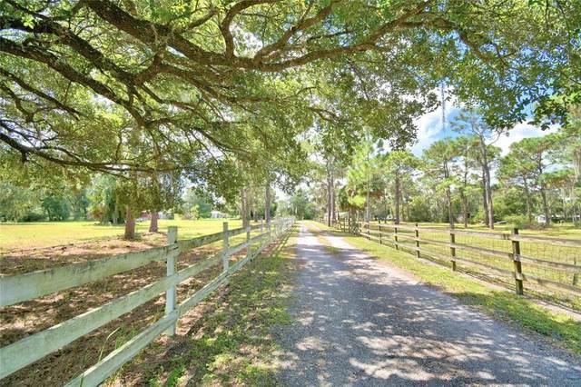 2037 Rosalie Lake Road, Lake Wales, FL 33898 (MLS #P4917608) :: GO Realty