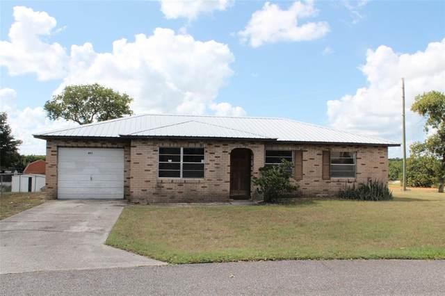 403 Webber Court, Babson Park, FL 33827 (MLS #P4917747) :: Everlane Realty