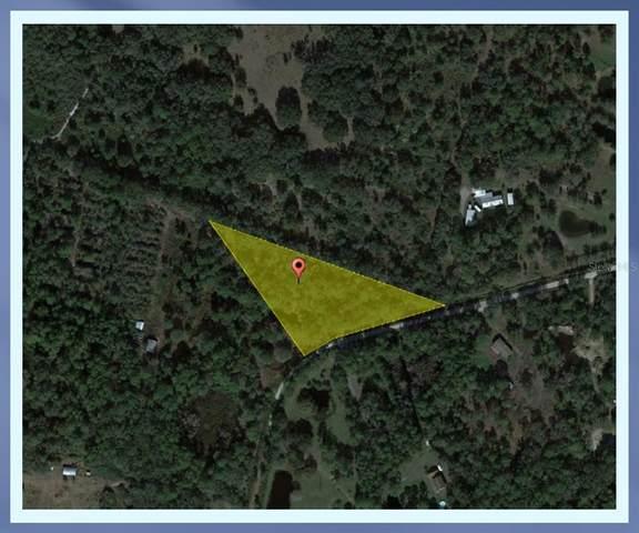13215 Seminole Trail, Wimauma, FL 33598 (MLS #P4917756) :: Gate Arty & the Group - Keller Williams Realty Smart